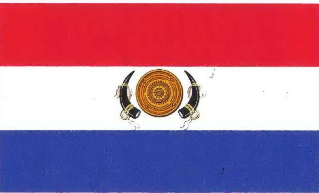 PSDP Flag